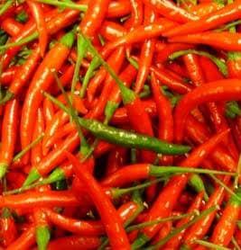 Pure de piments de thailande lhuile dolive