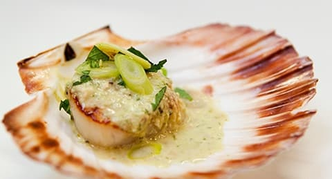 coquilles Saint-Jacques nature