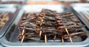 4 bonnes raisons de manger des insectes