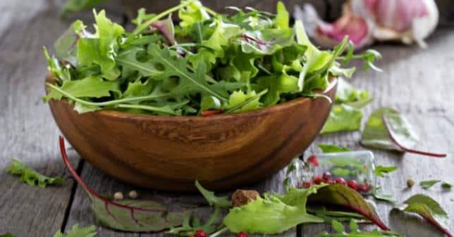 Comment conserver vos salades